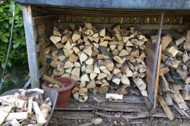 The Government are banning the sale of wet logs!